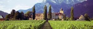 Swiss-wine-tours-2