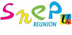 Logo-SNEP-FSU_run
