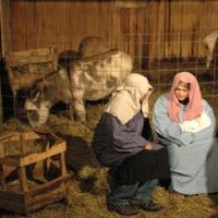 marmon valley nativity