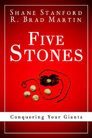 cover-fivestonesconqueringyourgiants