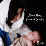 Mama Mary,Cause of Our Joy - SnoringScholar.com