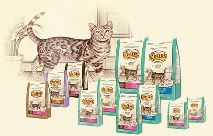 Pienso nutro para gatos adultos y gatos esterilizados - Alimento para gatos esterilizados ...