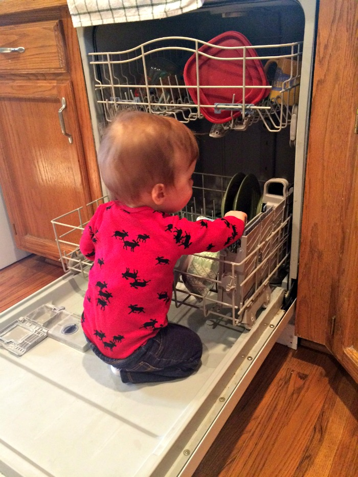 Caleb Twelve Month Update Dishwasher