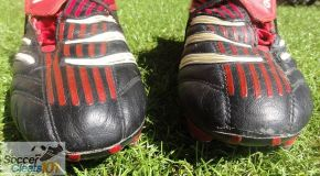 Cleatology – Adidas Predator Absolute