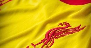 Liverpool Away 1415