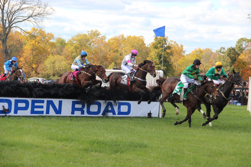 Farhills Race_horse racing_open road BMW (4)