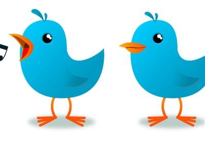 Twitter lancia Twitter Amplify