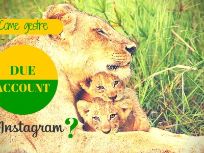 Come gestire 2 account Instagram