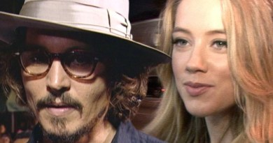 Johnny Depp divorce; his family 'hated' Amber