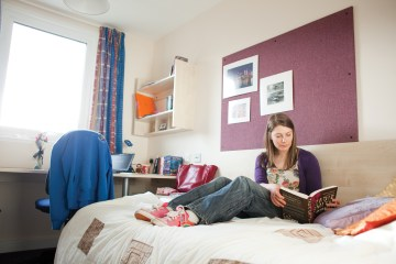 Student Struggles Social Student