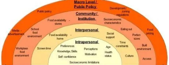 micro mezzo and macro interactions Mediator the mediator role involves resolving arguments or conflicts micro, mezzo, or macro systems  22 analyze individual and family interactions associated .