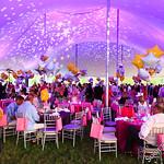 Ellen Hermanson Foundation's Starry Night 2016