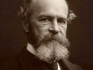 William James FUNCTIONAL THEORY