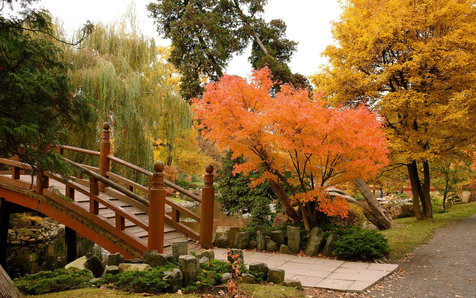 Fall Themed Computer Wallpaper Japanese Garden In Wroclaw By Fikusjanina Desktop Wallpaper