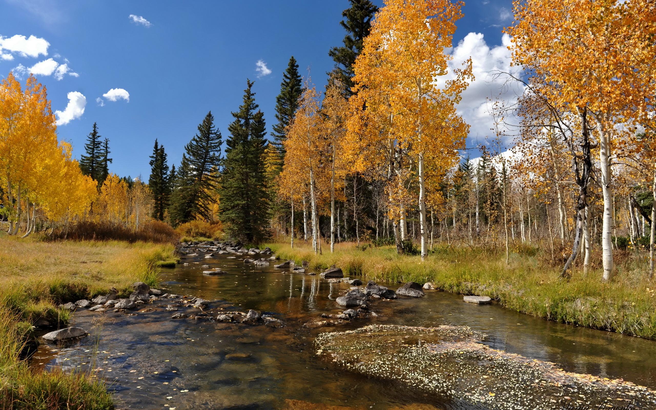 Fall Harvest Wallpaper Backgrounds Autumn Scene Desktop Wallpaper