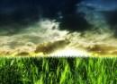 Vejen til hyperinflation – Landbruget