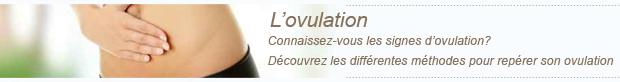 signes-ovulation