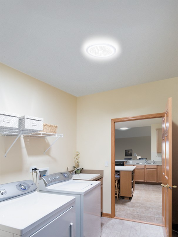 290DS_Laundry Room_Chicago