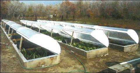 Solar Glazing For Greenhouses Fiberglass Solar Glazing