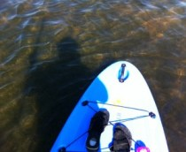 My Shadow Paddleboarding from Grande Tours, Placida, Fla.