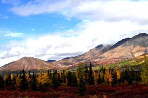 Driving AK-3 South, Just Pass Denali National Park
