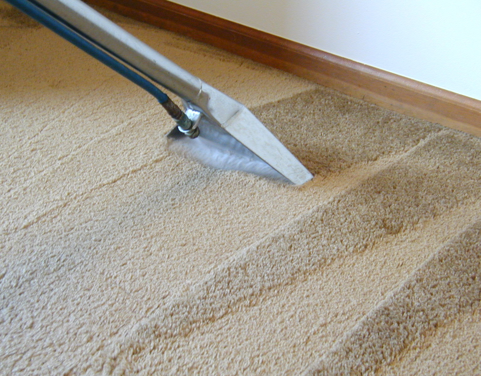 Carpet Cleaning Canley Heights