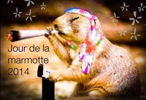 Jour de la marmotte 2014 (© eclectech.co.uk)