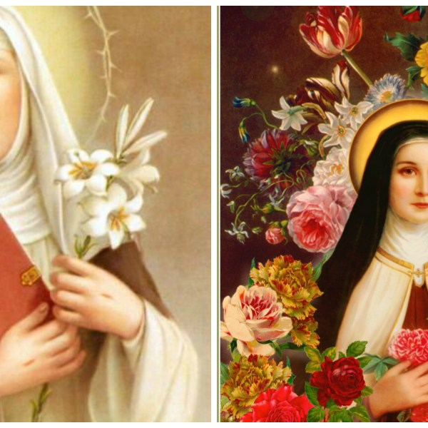 Patron Saint Series: St. Catherine and St. Therese {guest post by Tacy}