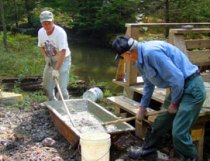 Conservancy volunteers working on the Piersol Memorial Trail Bridge