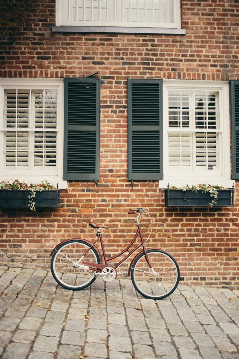 Something Sakura: Brilliant Bicycles
