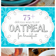 75+ Delicious Oatmeal Breakfast Recipes | www.somethingswanky.com