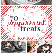 70+ Peppermint Treats | www.somethingswanky.com