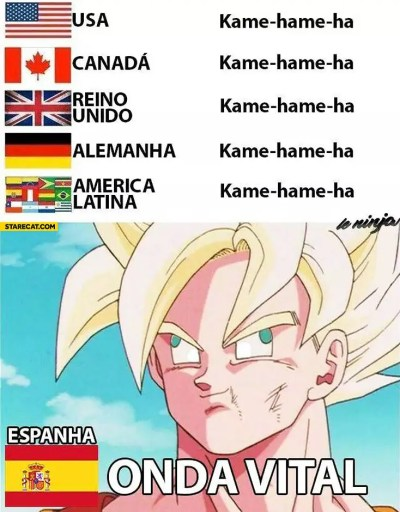kame-hame-ha-in-spanish-onda-vital