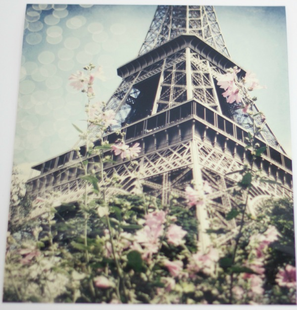Eiffel tower / Chelsea Victoria