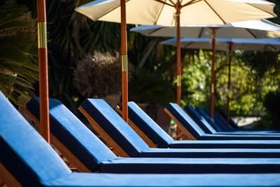 Sun loungers in the hotel pool