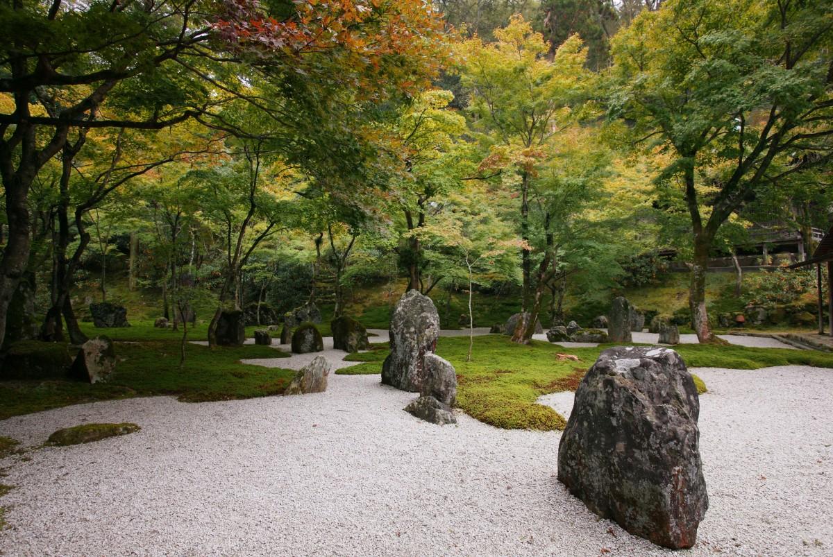 Water Fall Hd Wallpaper 4k Create A Relaxing Zen Space In Your Backyard