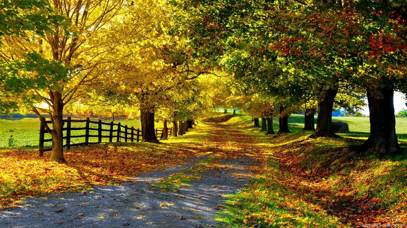 Wallpapers Hd Para Facebook Imagens Natureza Paisagens 42 S 243 Papel De Parede Gr 225 Tis