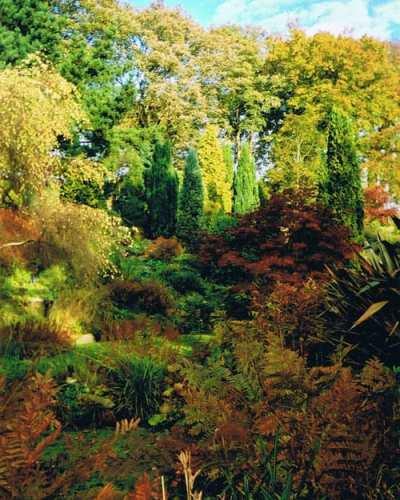 Fletcher-Moss-gardens-autum