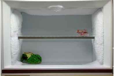 how-to-defrost-refriegerator