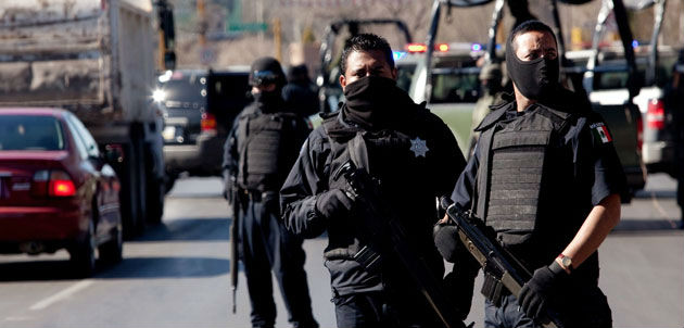 policiafed