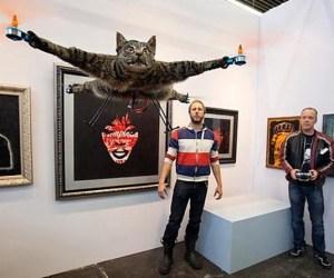 gato_helicoptero