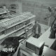 Luchador destruye tienda con ayuda de avestruces