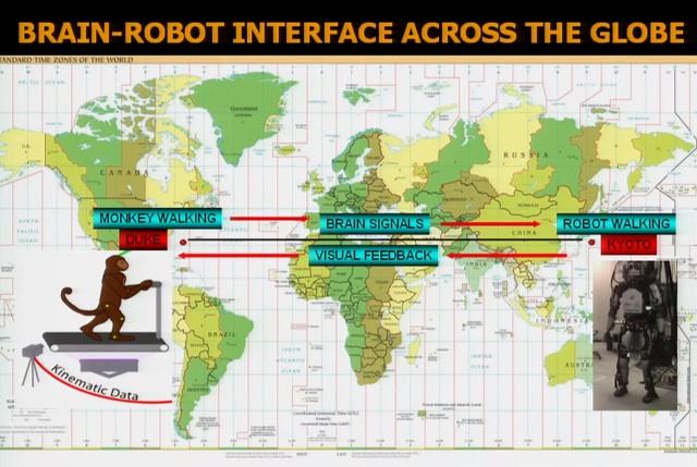 Mono controla robot 03