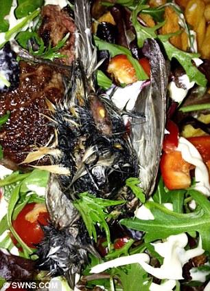 Tesco Salad 2