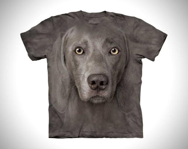 perro playera