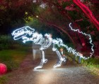 A T-Rex created using 170 second exposure