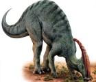 Encuentran cola de dinosaurio en México
