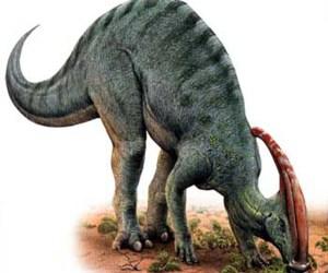 cola dinosaurio hadrosaurio mexico descubren inah
