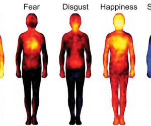 Mapa de las emociones02