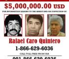 Tras la caída del Chapo, ellos son los más buscados por la DEA